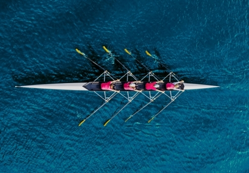The Anatomy Of A High Performing Team